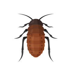 Cockroach icon on white background vector
