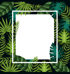 Cute framework with exotic leaves plants vector