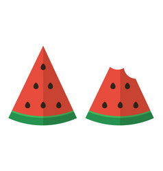 Flat design two slices of watermelon vector image