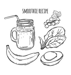 smoothie recipe healthy eating beverage ill vector image