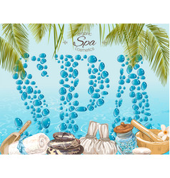 Spa drops banner vector image