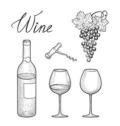 wine set wine glass bottle grape lettering vector image
