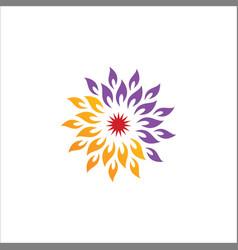 abstract star circle logo vector image