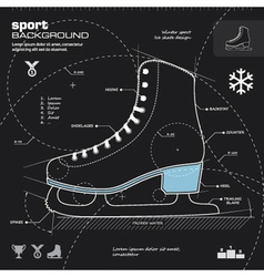 Iceskate infographic design background vector image