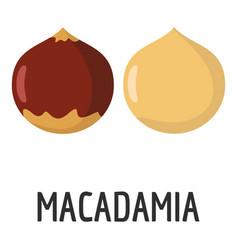 macadamia icon flat style vector image