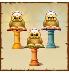 Three owls with books sitting on the podium vector image