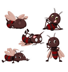 collection of mosquito cartoon vector image