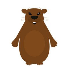 Groundhog on a white background vector