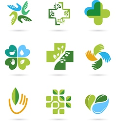 Natural Alternative Herbal Medicine icons vector image