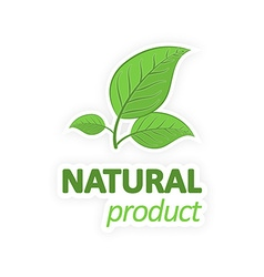 Natural product Green leaves on a white background vector