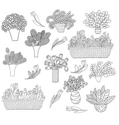 set of cute cartoon plants in pots and vases vector image