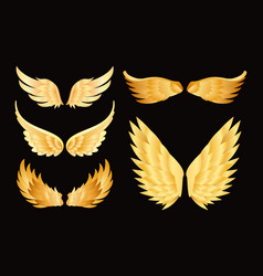 Set of different golden wings vector