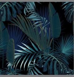 tropical night vintage palm banana vector image