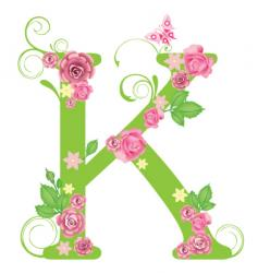 k vector image vector image
