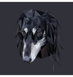 Saluki polygonal portrait vector image
