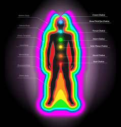 Auras and chakras vector