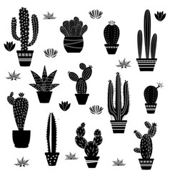 cactus silhouettes on white background vector image