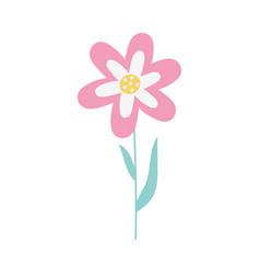 flower decoration spring season floral icon vector image