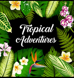 tropical plants and flowers palm leaves poster vector image
