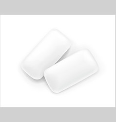 two chewing gum vector image