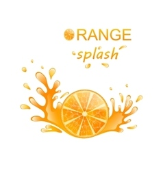 Slice of Orange with Splashing vector image vector image