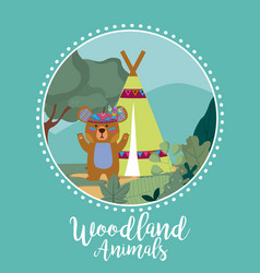 Bear woodland animals vector