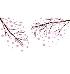 Cherry blossom2 vector image