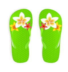 Flip Flops With Flowers vector image