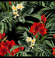 Tropical red lilies plumeria and protea flowers vector