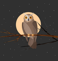 wild forest feathered nocturnal predatory owl of vector image