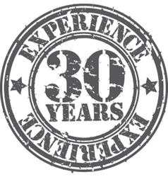 Grunge 30 years of experience rubber stamp vector image vector image
