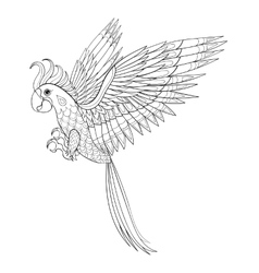 Hand drawn tribal Parrot bird totem for adult vector image