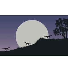At night Eoraptor in hills scnery silhouette vector image
