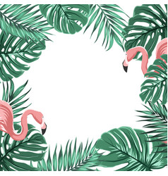 tropical border frame leaves pink flamingo birds vector image vector image