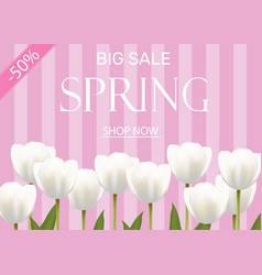 spring sale with white flowers vector image vector image