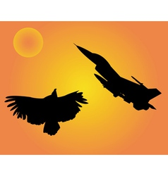 aircraft and bird eagle vector image