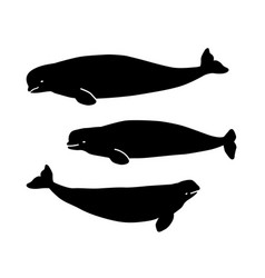 beluga figures for the background laser cutting vector image