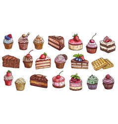 Cakes cheesecakes dessert sweets cupcakes sketch vector