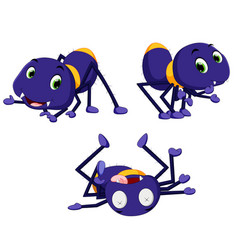 collection of spider cartoon vector image