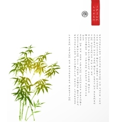 Design template with bamboo trees vector