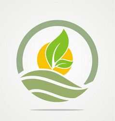 Organic farm seed green leaf logo vector