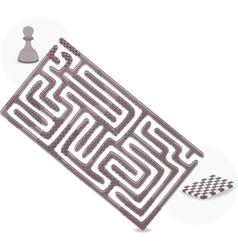 Pawn Maze vector image