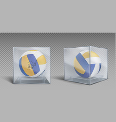 volleyball balls trophy in glass or plastic case vector image