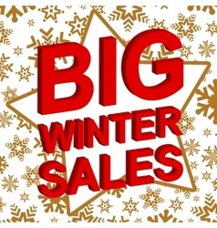Winter sale poster with BIG WINTER SALE text vector image