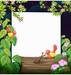 Birds and a white board vector image vector image
