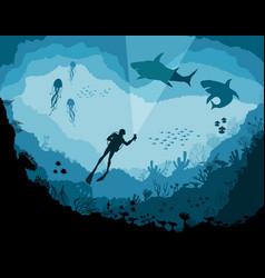 divers and sharks reef underwater wildlife vector image