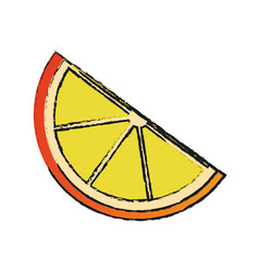 Lemon slice icon image vector