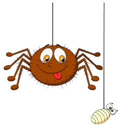Spider and prey vector