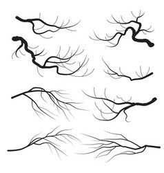 Tree branches silhouette set vector
