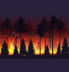 wild fire in the night forest natural disaster vector image